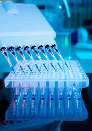 pipeta: Configuración de ensayo de amplificación de ADN