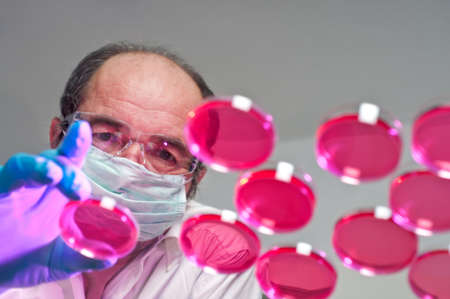 Scientist launches cell culture experiment Stock Photo - 15689682