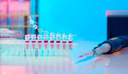 amplification: PCR pour l'amplification d'ADN bande et pipette automatique Banque d'images