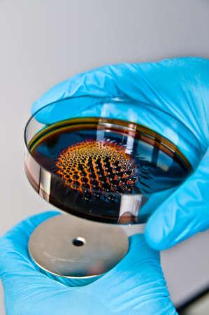 magnetismo: Scienziato detiene potente magnete sotto il barattolo di liquido reattivo Archivio Fotografico
