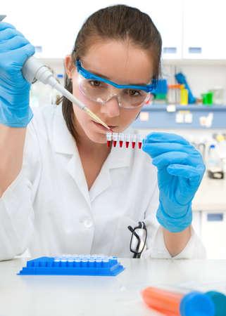 pipeta: Científico joven sostiene franja de muestras para la amplificación de ADN Foto de archivo
