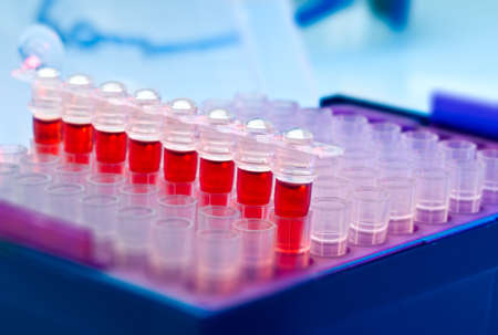 amplification: Plastic tubes for DNA amplification using PCR Stock Photo