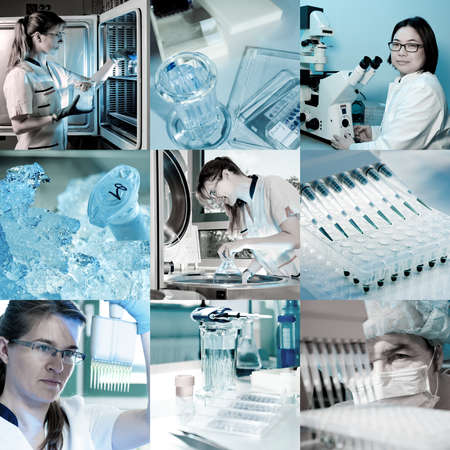 Scientists work in modern lab environment, collage photo