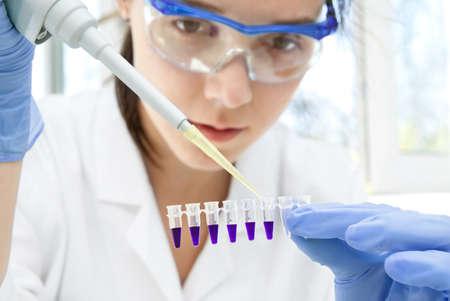amplification: Les jeunes femmes scientifiques �chantillons charges pour l'amplification d'ADN par PCR dans des tubes en plastique