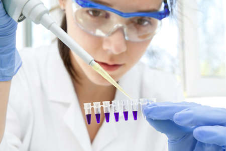 Young female scientist loads samples for DNA amplification by PCR into plastic tubes photo
