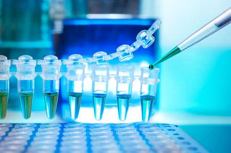 pipette: Tubos para la amplificaci�n del ADN por PCR