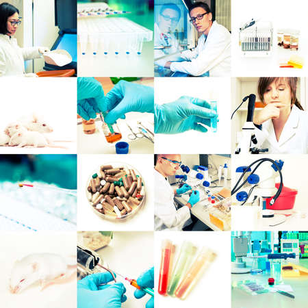 Scientists and laboratory work, collage Stock Photo - 17133154