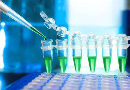 pipeta: Pllastic tubos de amplificación del DNA y la pipeta