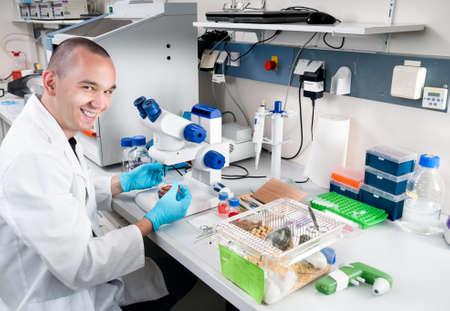 investigador cientifico: Sonriente joven científico trabaja en el laboratorio