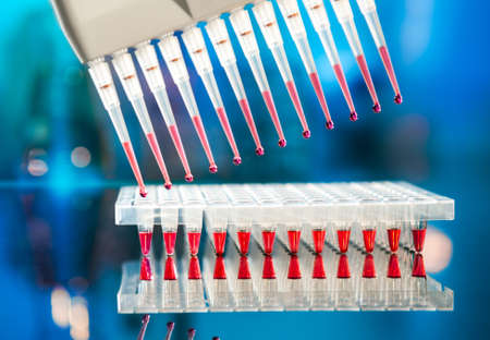 Tools for PCR amplification of DNA  96-well plate and automatic pipette  Stock Photo