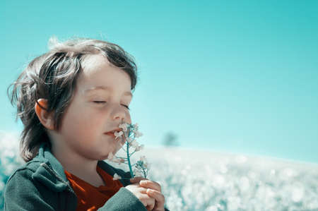 Little boy on the field sniffing a flower photo