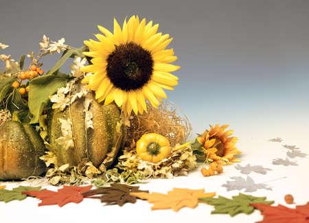 autumn arrangement: Autumn arrangement on gradiewnt background, space
