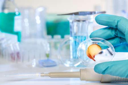 Testowanie owoce skażenia pestycydami w laboratorium