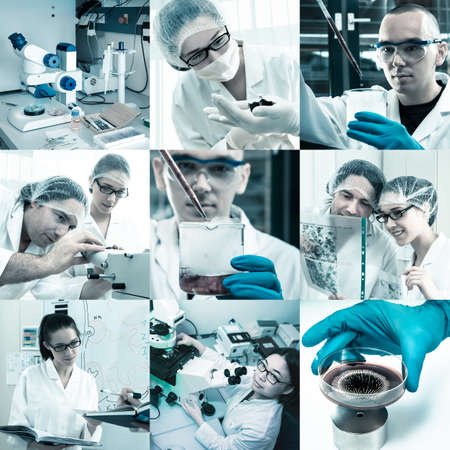 Scientists working in the lab, collage photo