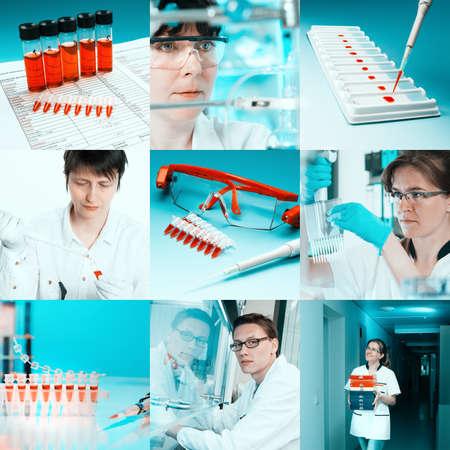 globulos blancos: Los científicos que trabajan con diversas muestras, collage