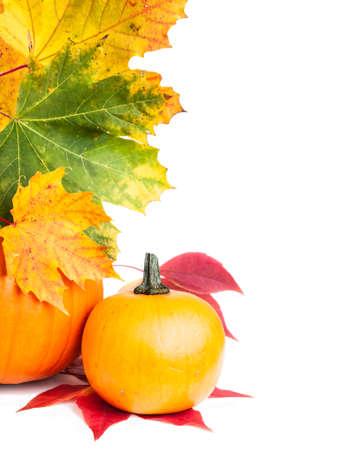 pumpkin border: Autumn vertical edge  border with pumpkins and Autumn leaves, space