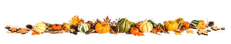 fall leaves border: Autumn leaves, berries and pumpkins as a border, Fall background, space Stock Photo