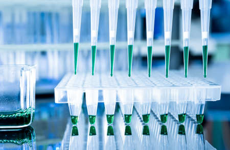 amplification: Tools for PCR amplification of DNA  96-well plate and automatic pipette  Stock Photo