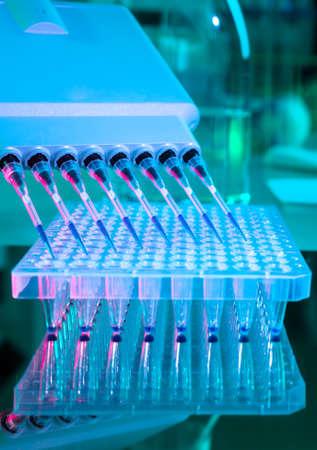 amplification: Outils pour l'amplification par PCR de l'ADN plaque de 96 puits et pipette automatique