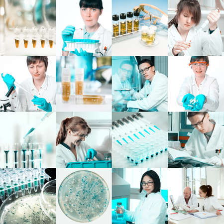 Scientists work in microbiological laboratory, collage