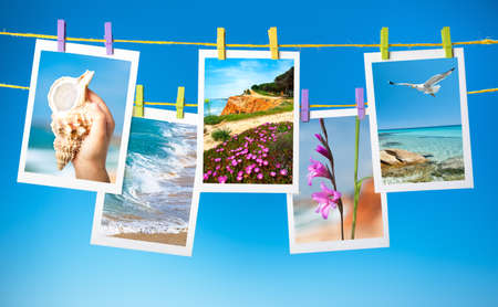 animal picture: Travel pictures hanging on colorful pegs on blue background, collage