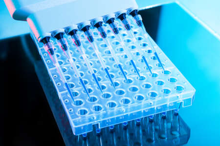 throughput: Tools for DNA analysis with PCR reaction, multipipette and 96-well plate