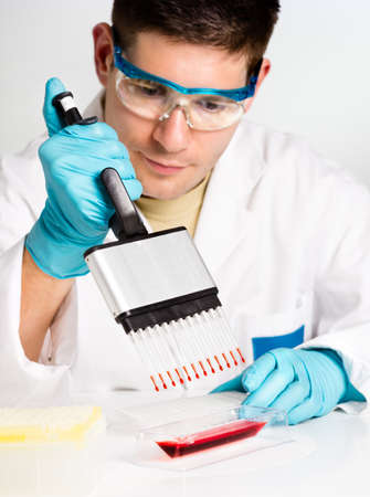 Young biologist sets PCR reaction with multichannel pipette photo