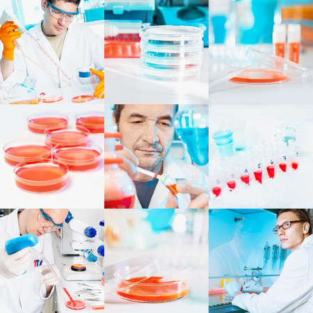 Scientists perform cell culture experiments, collage