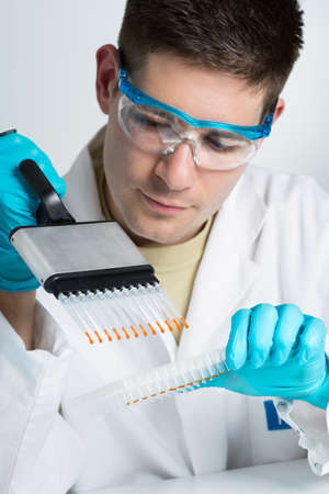 sequencing: Young biologist sets PCR reaction with multichannel pipette  Stock Photo