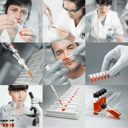 Scientists working with various samples, collage photo