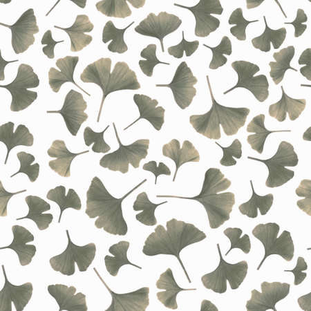 Gingko leaves isolated on white background, toned image, seamless pattern photo