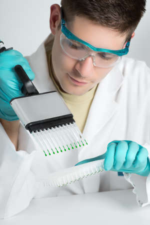 laboratory technician: Young biologist sets up PCR reaction with multichannel pipette  Stock Photo