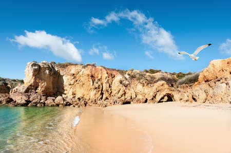 Golden beaches and sandstone cliffs near Albufeira, Portugal photo