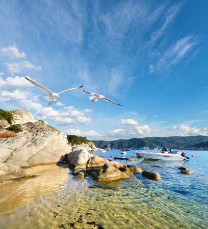 nautic: Seagulls fly over shallow water in Kalamitsi bay, Sithonia, Halkidiki, Greece Stock Photo