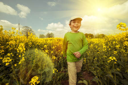 Boy walks through rapeseed field, tinted image photo