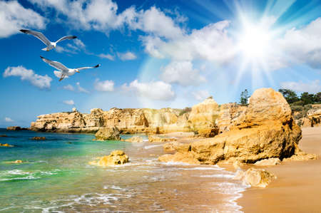 Golden beaches and sandstone cliffs near Albufeira, South Portugal  photo