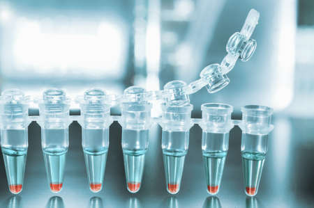 Tubes for DNA amplification by PCR 스톡 콘텐츠