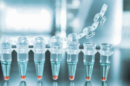 Tubes for DNA amplification by PCR Standard-Bild