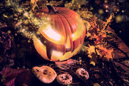 Halloween pumpkin outdoors with oak leaves and mushrooms photo