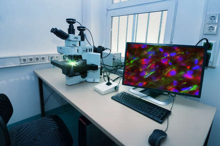 Modern microscope station with cell stained with antibody on the screen 스톡 콘텐츠