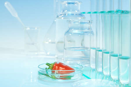 pesticides: Testing red peppers for contamination with pesticides in laboratory