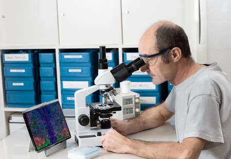 observes: Senior male scientist or tech observes sample under the microscope