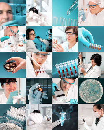 Enthusiastic scientists work in modern biological facility, picture set photo