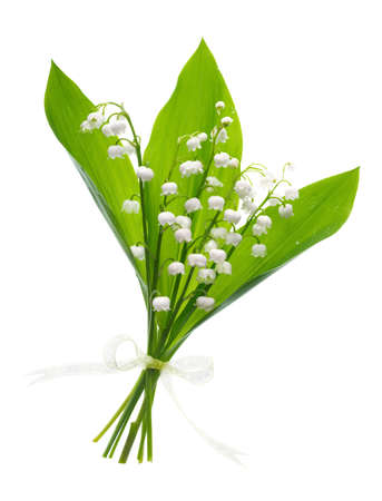 muguet: Closeup on lily of the valley, bunch of flowers on white background