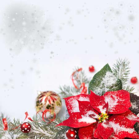 flor de pascua: Fondo de la Navidad con el poinsettia, �rbol de navidad y adornos en la nieve