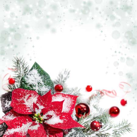 Flor De Pascua, Bolas De Color Rojo, árbol De Navidad Y La Nieve ...