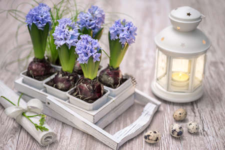 candle holders: Easter decorations with blue hyacinth flowers and quail eggs