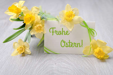 Ostern: Paper card with greeting Happy Easter in German language and narcissus flowers Stock Photo