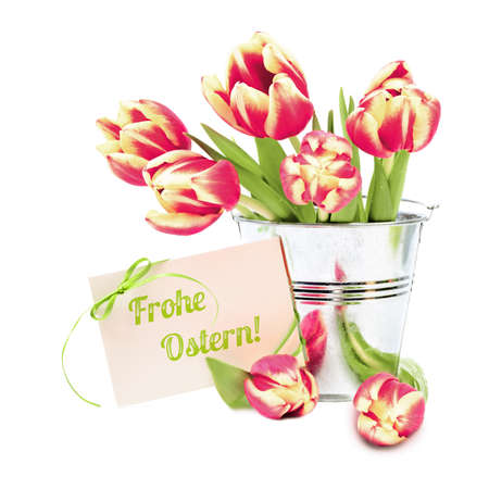 Ostern: Red stripy tulips in shiny tin backet and greeting card Frohe Ostern! (Happy Easter in German) on white background