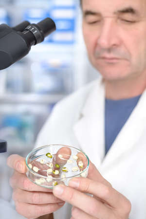 e coli: Quality control. Senior scientist or tech selects sprouts for testing. Focus on the hand with sample Stock Photo